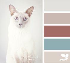 palette de couleurs pastels