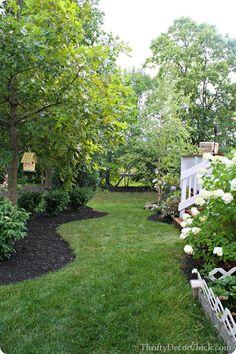 Late summer backyard