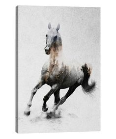 Another great find on #zulily! Andreas Lie Horse IV Gallery-Wrapped Canvas #zulilyfinds