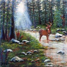 White Tail Creek Landscape