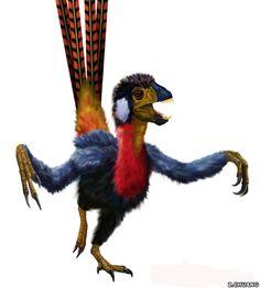 Epidexipteryx