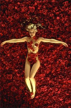 American Beauty - one of my favourite movies