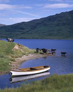 Loch Arklet, Nr. Inversnaid, Stirling, Scotland