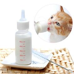 Chinatera New Pet Small Dog Puppy Cat Kitten Milk Nursing Care Feeding Bottle Set ** Want to know more, click on the image.