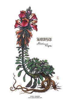 Emma Lazauski Illustration