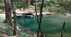 ~ swimming hole: Peekamoose Blue Hole, in the forest of the Catskills, New York
