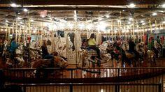 Loof Carousel ca. 1909 (390 pieces)