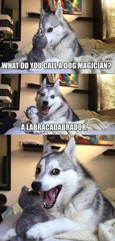 labracadabra chhoo