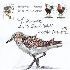 ENCELOPE MAIL ART - Courrier à plumes / Expédié depuis Ouessant Water Sketch, Typography Prints, Lettering, Sketch Journal, Decorated Envelopes, Sound Art, Envelope Art, Postcard Art, Sketchbook Drawings