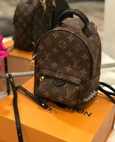 5544c2678018 Louis Vuitton Authentic LV Palm Springs Mini Backpack PM Monogram Bag BRAND  NEW