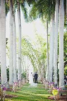 Bamboo & orchid wedding aisle decorations