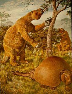 Prehistoric giant sloth and giant armidillo