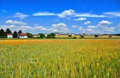 Suche Finde Entdecke  Similio, das österreichische Informationsportal  Geographie - Sachkunde - Wirtschaftskunde Portal, Vineyard, Outdoor, Communities Unit, Landscapes, Economics, Things To Do, Searching, Outdoors