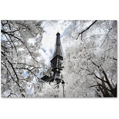 Trademark Fine Art Another Look at Paris V Canvas Art by Philippe Hugonnard, Size: 30 x 47, White