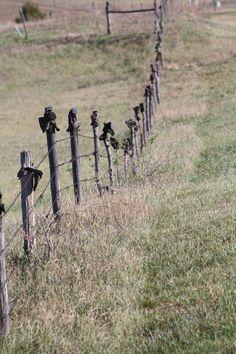 """""""Boot Hill""""  in the Sandhills......Tami Cox Swearingen.......Sandhills Express"""