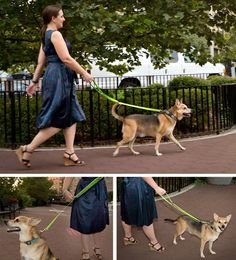 The City Lead by Konalu is seriously one of the coolest (and most innovative) dog products I've seen in recent memory! The leashes are adjustable!