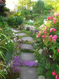 Gartenweg mit Muschelkalkplatten #unsertraumingruen#Gartenweg#Gartengestaltung