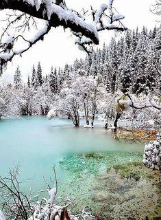 Beauty Is Everywhere I Love Winter, Winter Snow, Winter Christmas, Winter White, Winter Photography, Nature Photography, Travel Photography, Winter Magic, Winter Scenery