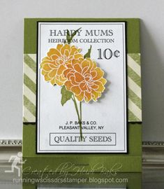 Seed Packet Matchbook
