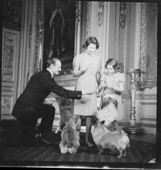 Princesses Elizabeth and Margaret with dogs, 1941   Royal Collection Trust