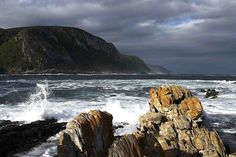 Storms River Mouth, South Africa Places Ive Been, Places To Go, River Mouth, Lush Garden, Storms, West Coast, South Africa, Birth, Cape