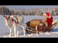 Best video messages of Santa Claus in Lapland