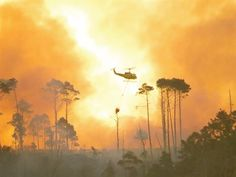 More photos of the Cape Town fires | News24