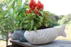 Medium Ceramic Fish Planter  white and by aphroditescanvas on Etsy, New 4TheHmSection