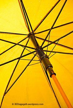 The rain is gone :-) // Regenschirm, #gelb, unter dem #Regenschirm // 365tagegelb.wordpress.com