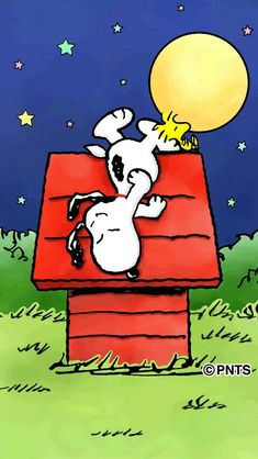 Snoopy and Woodstock night