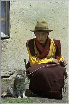 Jeune moine Tibétain et son chat