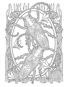 creative haven awesome insect coloring pages - Google Search