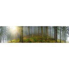 Deep Wood Mist