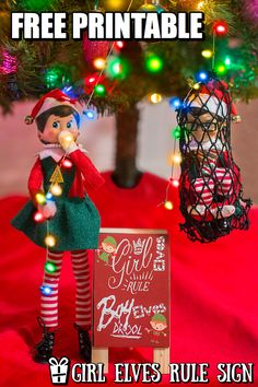 THE ELF ON THE SHELF~GIRL ELVES  RULE