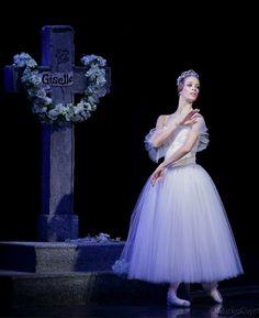 Giselle Iva Vitić Gameiro as Myrtha Ballet Images, Ballet Photos, Danse Macabre, Head Jewelry, Ballet Beautiful, Headpiece, Ballet Dance, Ballerina, Gymnastics