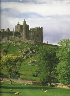 The Rock of Cashel. Built by Brian Boru, the last high king of Ireland