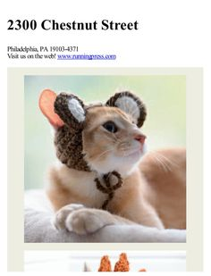 Cats in hats 30 knit and crochet hat patterns for your kitty