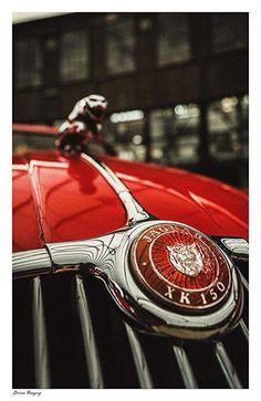Jaguar XK150 Cat