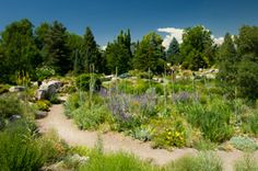 Denver Botanic Gardens - Denver Botanic Gardens presents a wide range of gardens and collections that illustrate an ever-widening diversity of plants from all corners of the world. 42 distinctive gardens define and celebrate our Western identity and a unique high altitude climate and geography.