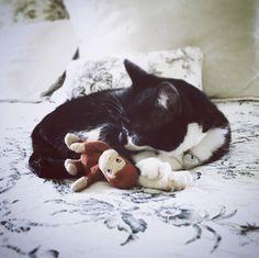 "ivy&monkee, her ""teddy monkey"" https://www.instagram.com/thelastoldhouse/"