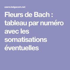 Fleurs de Bach : tableau par numéro avec les somatisations éventuelles