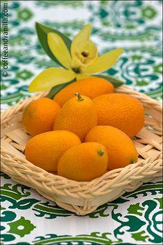 Basket of Kumquats / Cumquats Yeah cumquats scare me. The taste AND the just the sound of the name. Kumquat Recipes, Fruit Recipes, Orange Sorbet, Orange Blossom Water, Fresh Fruit, Citrus Fruits, Beautiful Fruits, Fruit Of The Spirit, Delicious Fruit