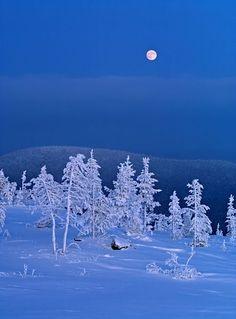 Sodankylä, Lapland, Finland photo by Kalervo Ojutkangas Winter Scenery, Winter Colors, Winter Night, Winter Time, Winter Moon, Helsinki, All Nature, Winter Beauty, Winter Pictures