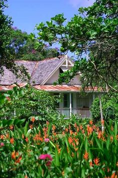 French Colonial Plantation house built in the mid at Balenbouche Estate, St. Colonial Cottage, British Colonial Decor, French Colonial, Caribbean Homes, Caribbean Vacations, Colonial Architecture, Beautiful Architecture, Jamaica, Puerto Rico