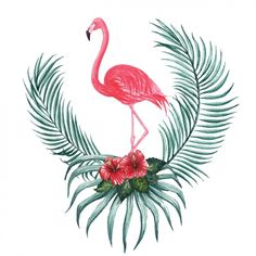 Diseño decorativo de flamenco en acuarela Vector Gratis