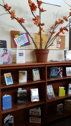 LGBTQ Month Display