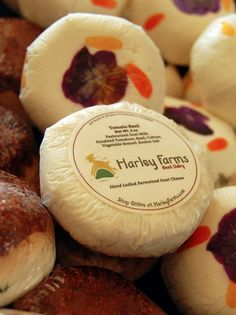 Bay Area Cheese Tours: Harley Farms, Cowgirl Creamery, Redwood Hill Farm & Creamery, Barinaga Ranch Farmstead, Tomales Farmstead Creamery