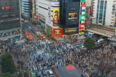 渋谷駅前 スクランブル交差点 in 渋谷区, 東京都 - Shibuya Crossing, the world's busiest pedestrian crosswalk.  Best enjoyed at night.