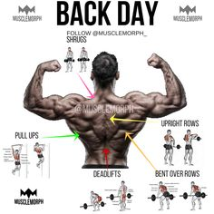 back day back exercise back workout gym bodybuilding fitness musclemorph http://healthymega.com Being overweight or clinically obese is a condition that's caused by having a high calorie intake and low energy expenditure. In order to lose weight, you can either reduce your calorie intake, or else exercise regularly and reduce your calorie intake at the same time. It's always more beneficial to exercise as well. Many people don't exercise correctly when they want to lose weight...