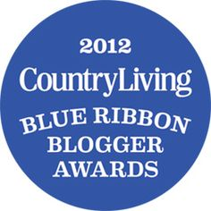 Vote for your favorite Blog! Blue Ribbon Blogger Awards -